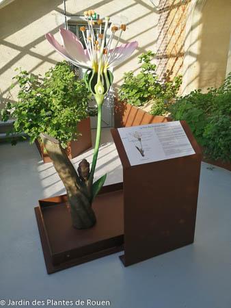 Sculpture de Fleur surdimensionnée réalisée en résine
